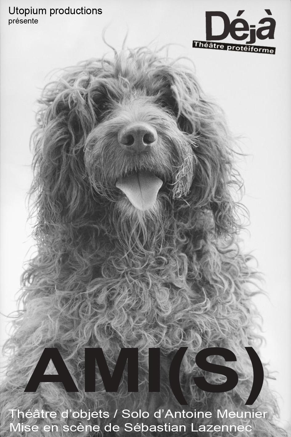 AMI(S)